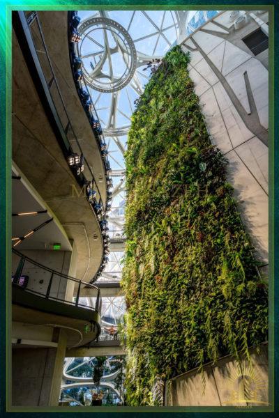 فضای سبز درون شرکت